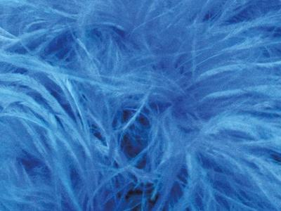 OSTRICH FEATHER FRINGE TURQUOISE
